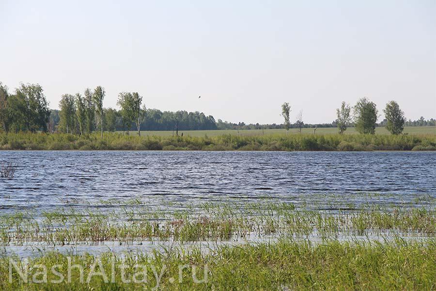Мало-Калтайское озеро