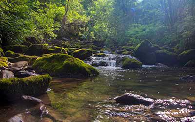 Каскад водопадов на Третьей речке