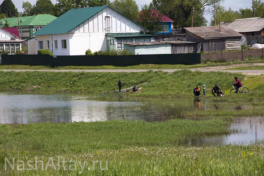 Село Полковниково
