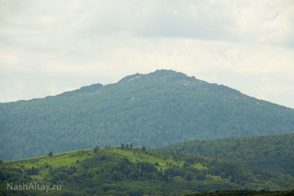 Гора Синюха
