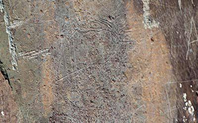 Изучение петроглифов на Алтае