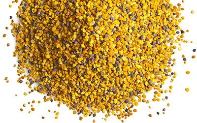 Цветочная пыльца и её полезные свойства