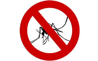 Способы спастись от комаров и мошек