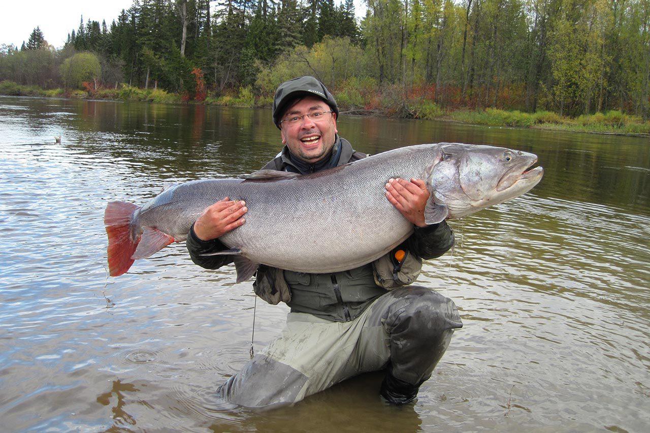 Рыба на Алтае