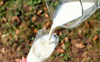 Кумыс - молочный напиток